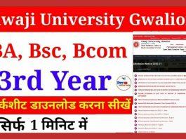 Jiwaji BA, Bsc, Bcom 3rd Year Marksheet Download 2020