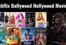 Hubflix 2022 Bollywood Hollywood Movies In Hindi Dubbed Download